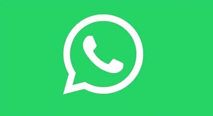 How-to-send-a-Cricket-sticker-in-WhatsApp