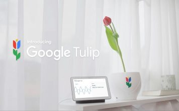 Google Tulip   Available on April 1, 2019