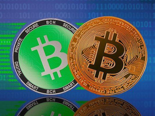 Bitcoin & Bitcoin Cash